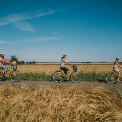 Familj cyklar på landsväg